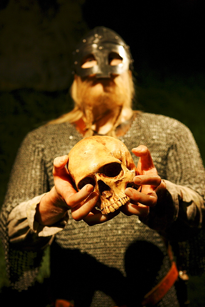 Wax figure of a viking holding a skull in his hands, museum of vikings, Haugesund, Rogaland, Norway, Scandinavia, Europe