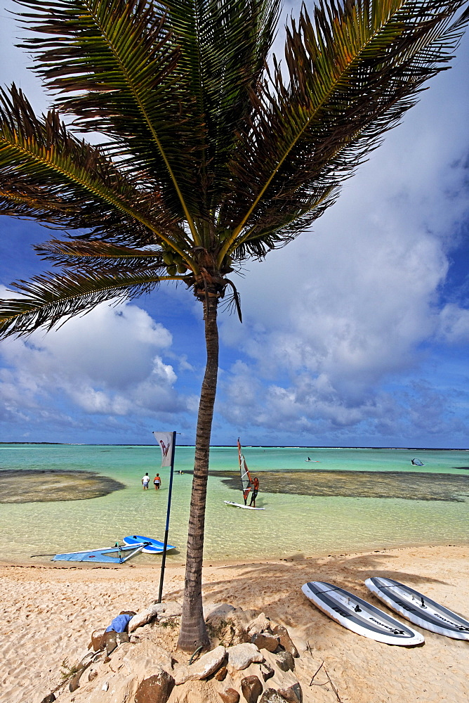 West Indies, Bonaire, Lac Bay Surfer