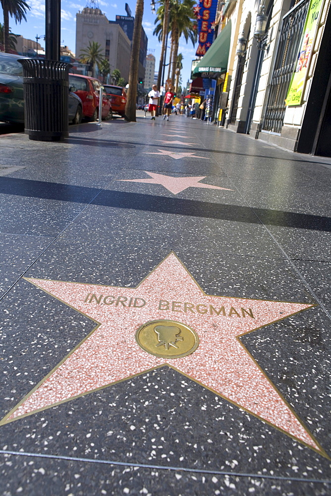 Ingrid Bergman star, Walk of Fame, Hollywood Boulevard, Los Angeles, California, USA, United States of America