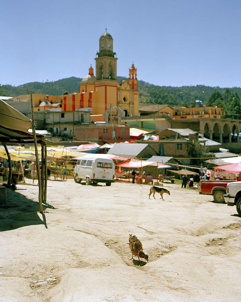 Market at the village Texocuixpan, Tlaxcala province, Mexico, America