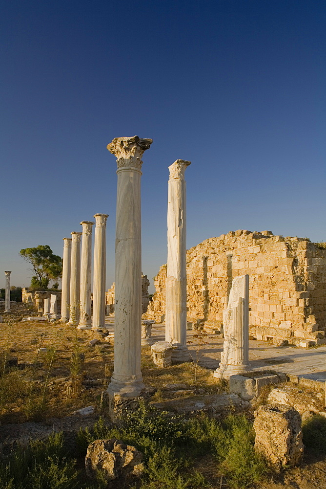 Gymnasium with its columned Palaestra, Ancient city of Salamis, courtyard, Salamis ruins, Salamis, Cyprus