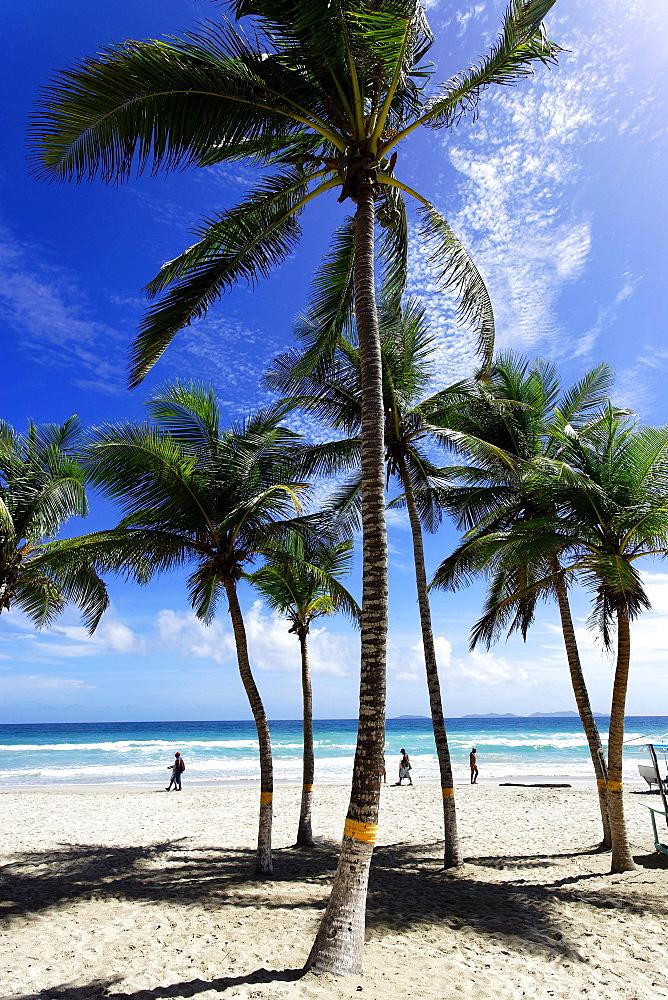 Playa El Aqua, Isla Margarita, Nueva Esparta, Venezuela