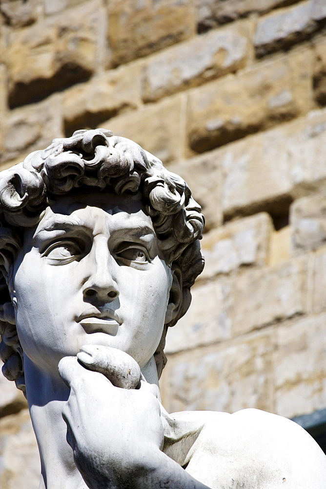 Head of the David Statue (by Michelangelo) on Piazza della Signoria, Florence, Tuscany, Italy