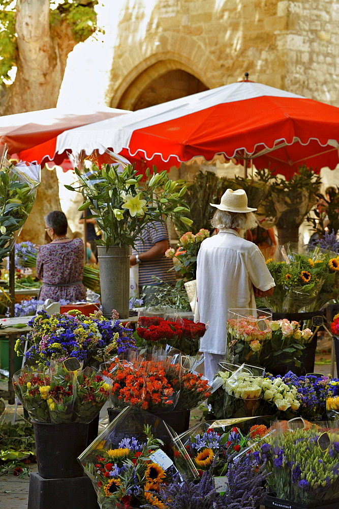 Flower stall at the market, Aix-en-Provence, Provence, France, Europe