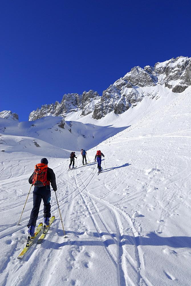 Backcountry skiers ascending, Griesner Kar, Wilder Kaiser, Kaiser range, Tyrol, Austria