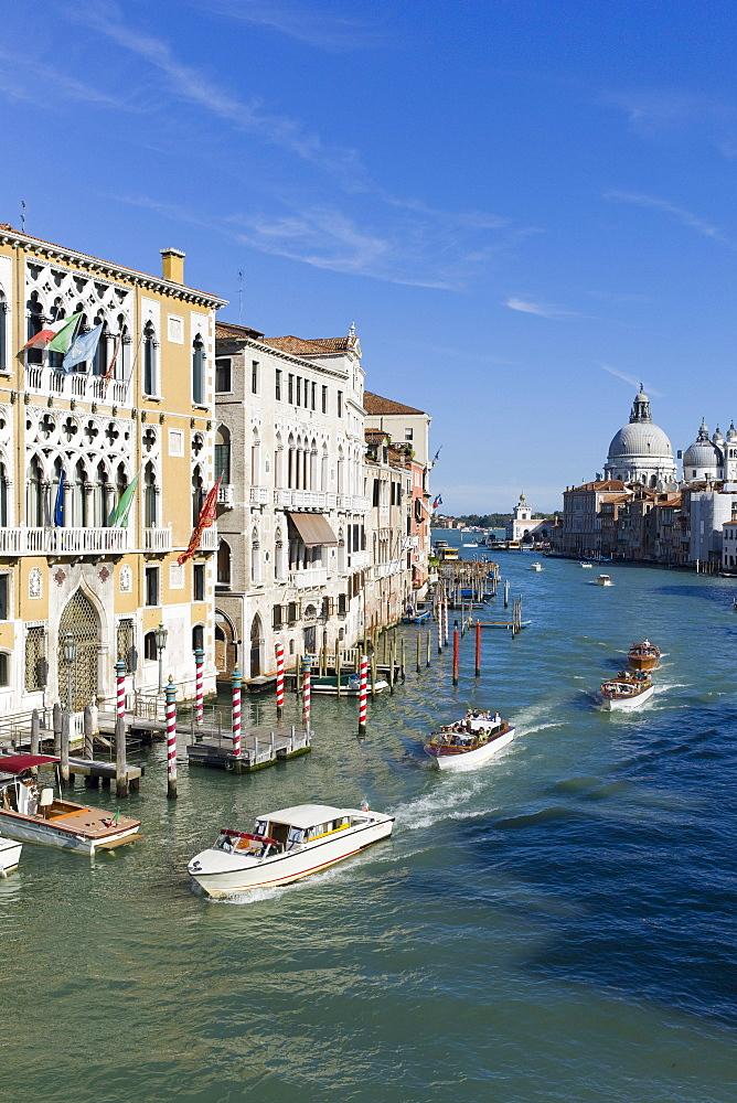 Water taxis on the Grand Canal from Ponte dell' Accademia bridge, with Chiesa di Santa Maria della Salute in the background, Venice, Veneto, Italy, Europe