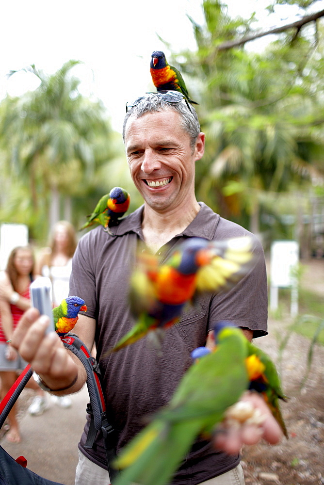 Tourist with Rainbow Lorikeets at Bungalow Bay Koala Village, Horseshoe Bay, northcoast of Magnetic island, Great Barrier Reef Marine Park, UNESCO World Heritage Site, Queensland, Australia
