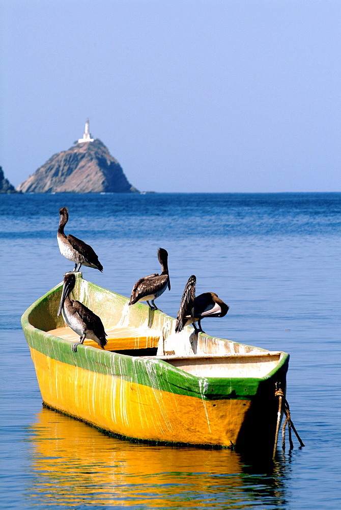 Pelicans in a boat in front of mountains, Taganga, Santa Marta, Colombia, South America