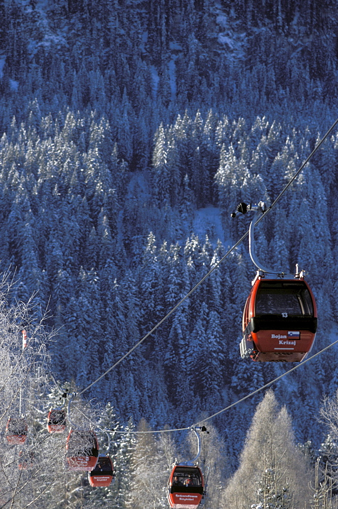 Hahnenkammbahn, cable car in front of snowy forest, Kitzbuehel, Tyrol, Austria, Europe