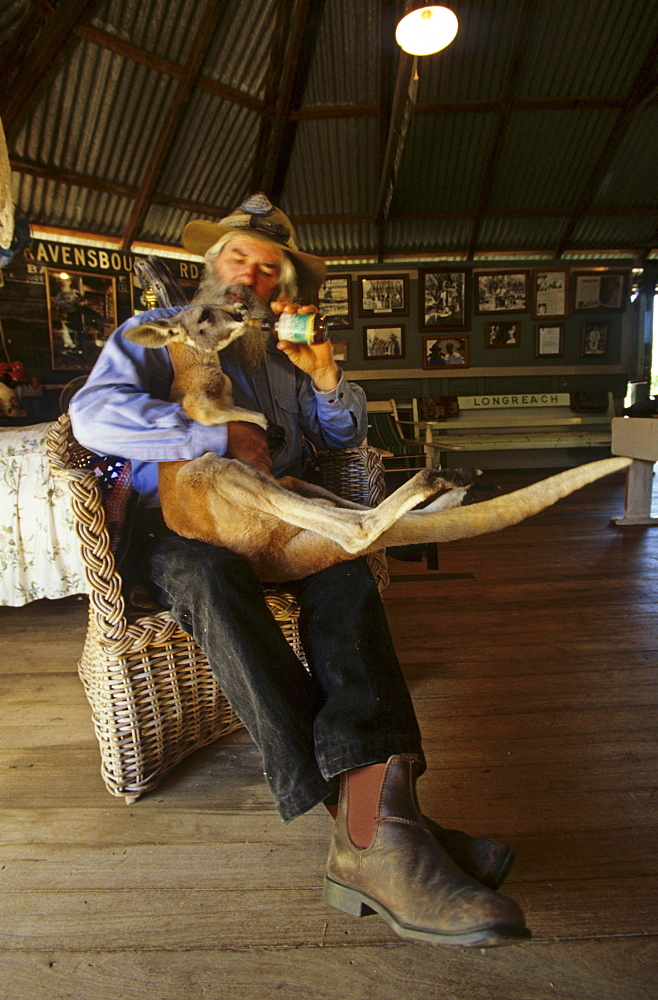 Mick Morrison, feeding a young kangaroo, Portrait of Mick who has a small curious museum called Mad Mick's Farm in Barcaldine, Local Aussie character, Maltilda Highway, Queensland, Australia