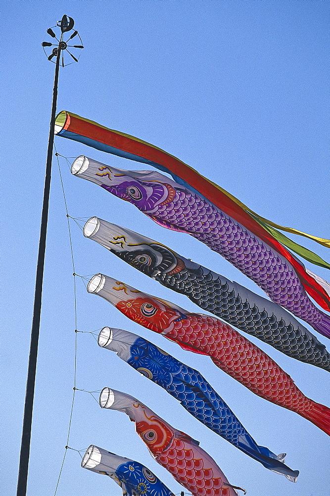 Koinobori, Flying Carp, annual Boy's Day, Japan