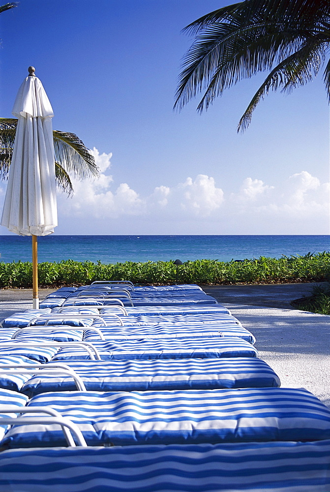 Deck Chairs Ritz Charlton Rose Hall Montego Bay Jamaica Caribbean
