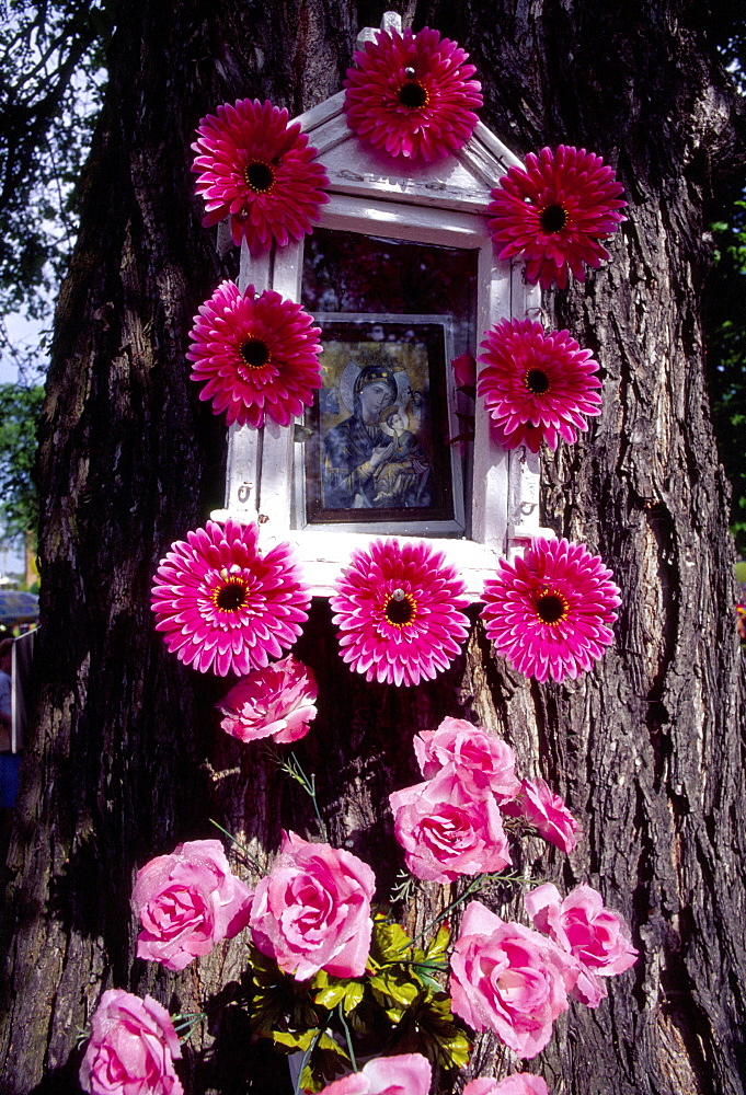 Shrine on tree decorated for Corpus Christi celebration in Spicimierz near Lodz, Poland