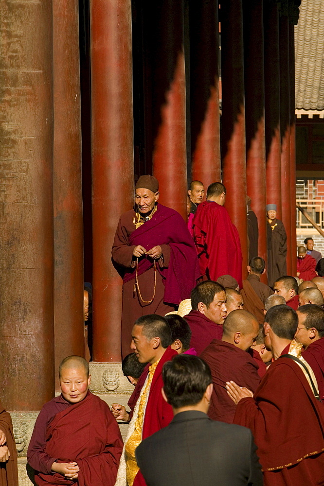 Buddhist monks honouring Wenshus the birthday celebrations, red columns of temple, Xiantong Monastery, Wutai Shan, Five Terrace Mountain, Buddhist Centre, town of Taihuai, Shanxi province, China
