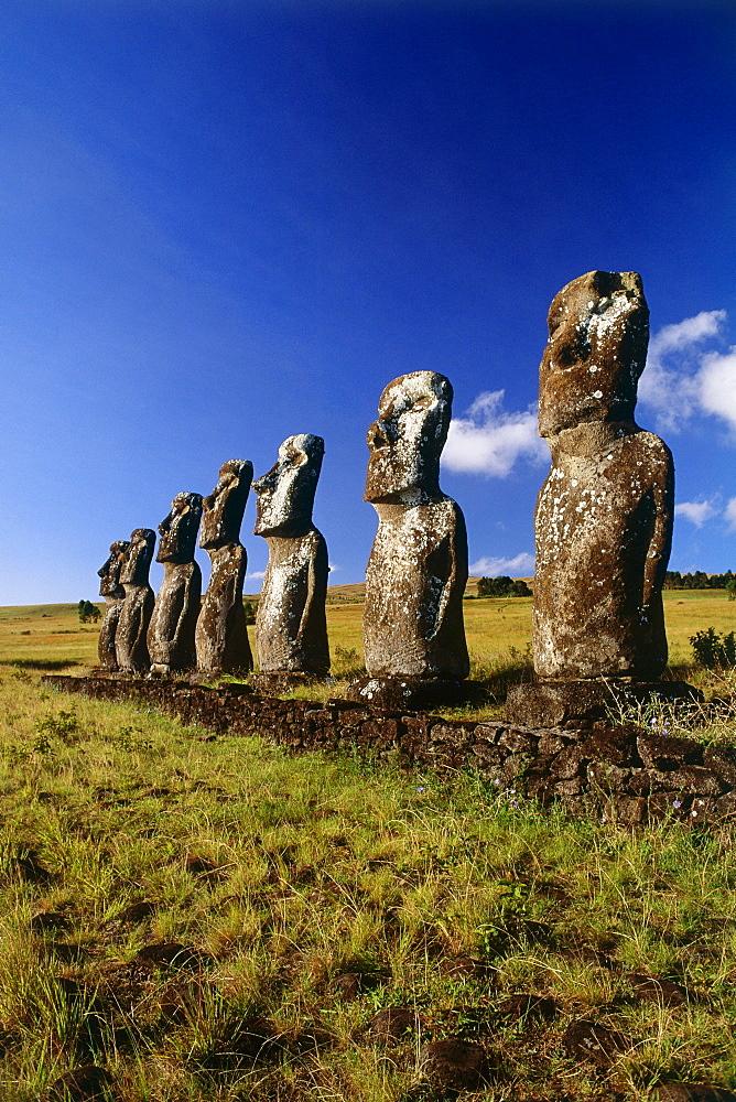 Seven Moai in the landscape north of Hanga Roa, Ahu A Kivi, Osterinsel