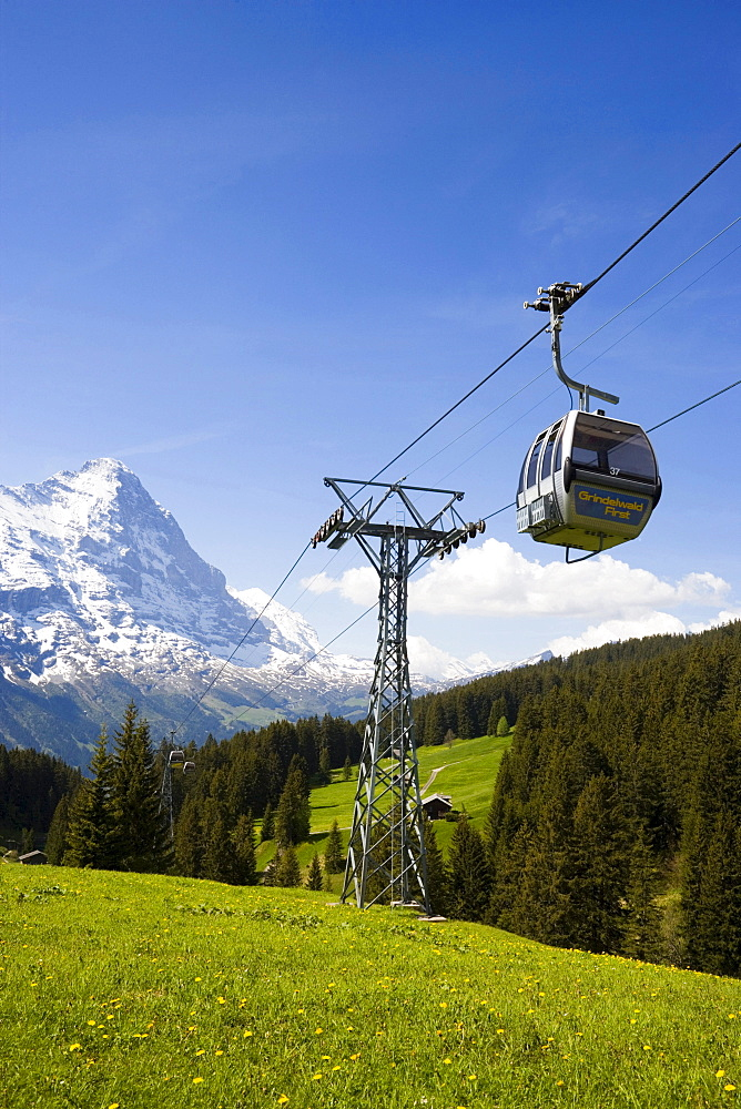 Cabin of the overhead cable car Firstbahn, Eiger (3970 m) in background, Grindelwald, Bernese Oberland (highlands), Canton of Bern, Switzerland