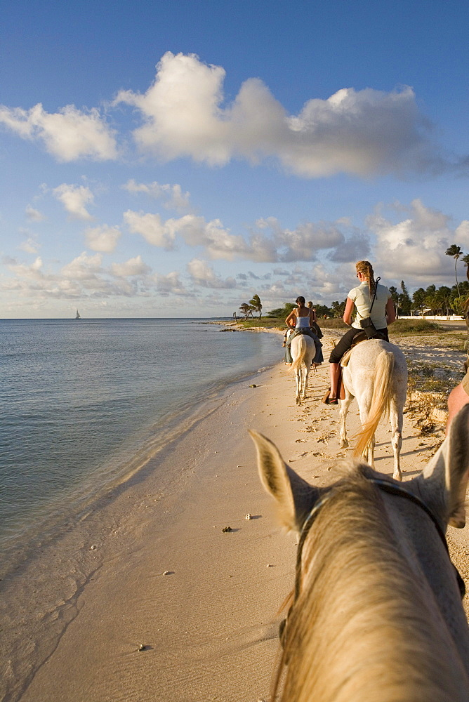 Horseback Riding on Beach, Rancho Notorious, Aruba, Dutch Caribbean