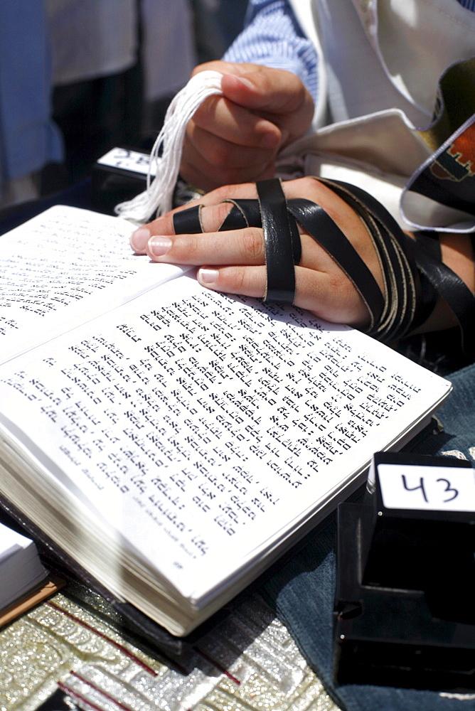 Close up of hands, man praying holding Torah, Wailing Wall, Jersualem, Israel