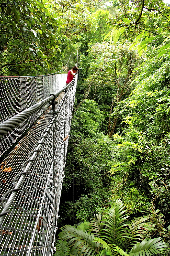 Woman crossing hanging bridge in Rainforest, Arenal Hanging Bridges, Costa Rica, Central America