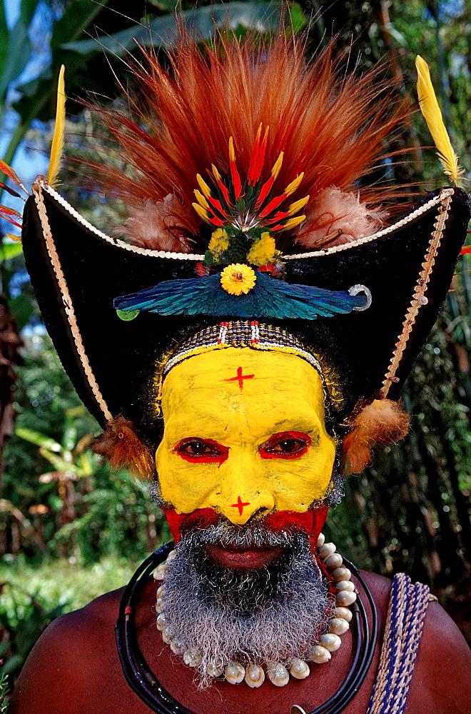 Huli wigman, Tari, Huli, Highlands, Papua New Guinea