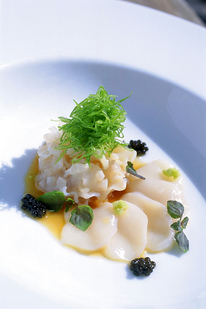 Live Geoduck with Yuzu and Baby Red Shiso, Hotel Setai, South Beach, Miami, Florida, USA