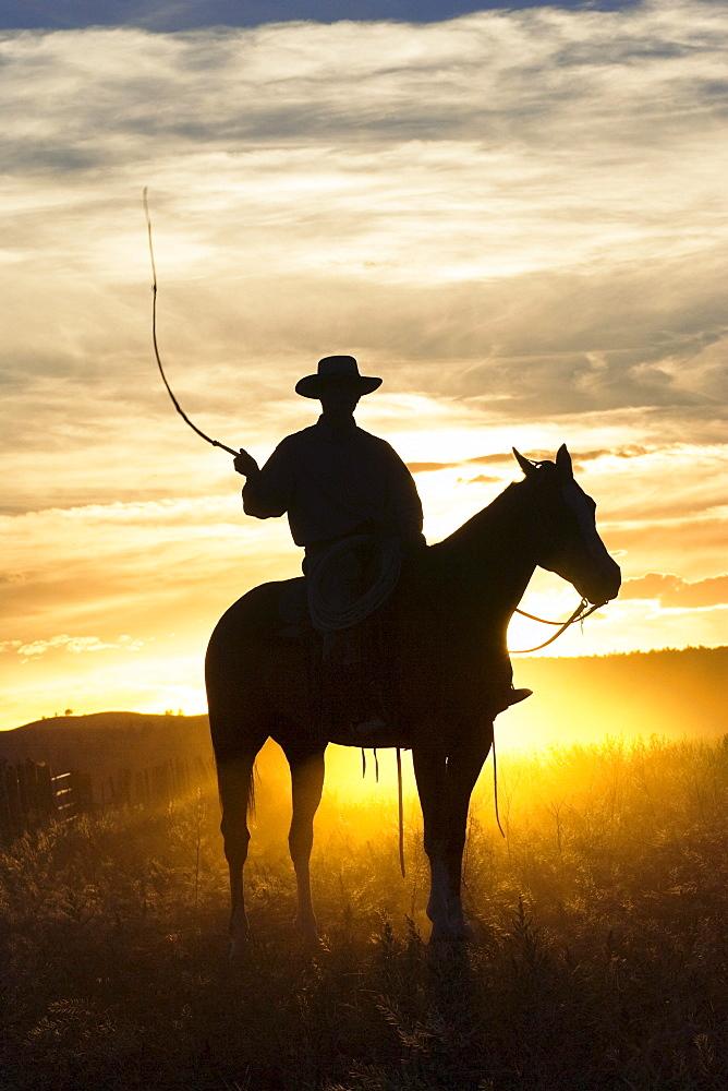cowboy at sunset, Oregon, USA