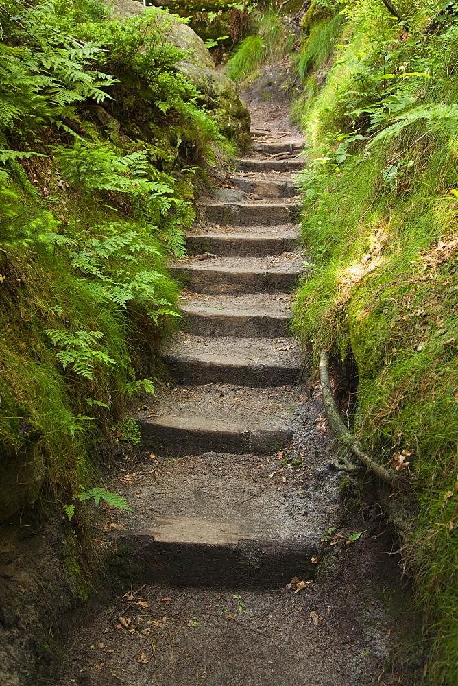 Ascent to the Schrammsteine Rocks, National Park Saxon Switzerland, Elbe Sandstone Mountains, Saxony, Germany, Europe