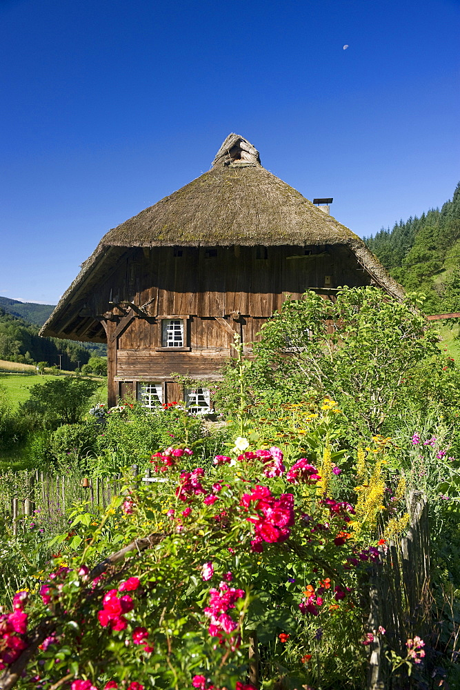Old mill and farmhouse garden, Oberprechtal, Black Forest, Baden-Wuerttemberg, Germany, Europe