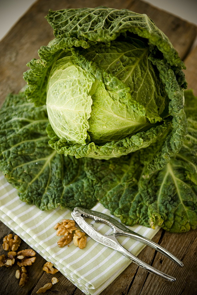 Green cabbage and walnuts, Vegetable, Healthy, Homegrown