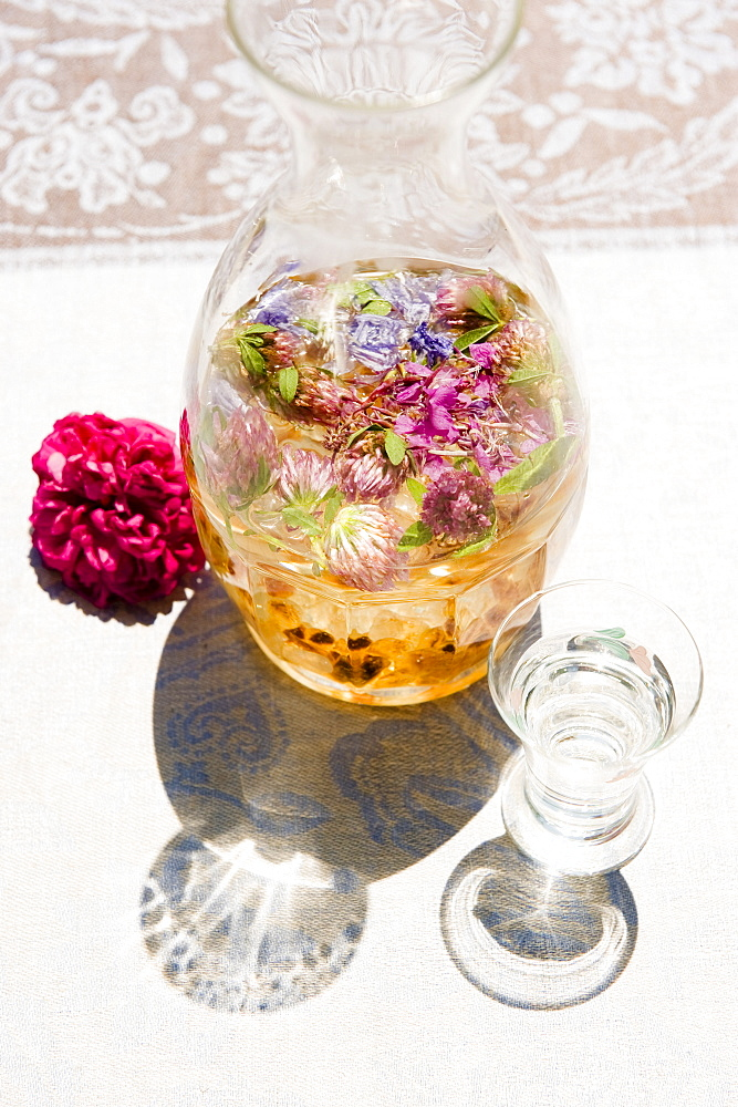 Liqueur with wild blossoms and herbs, herbage, garden, homemade