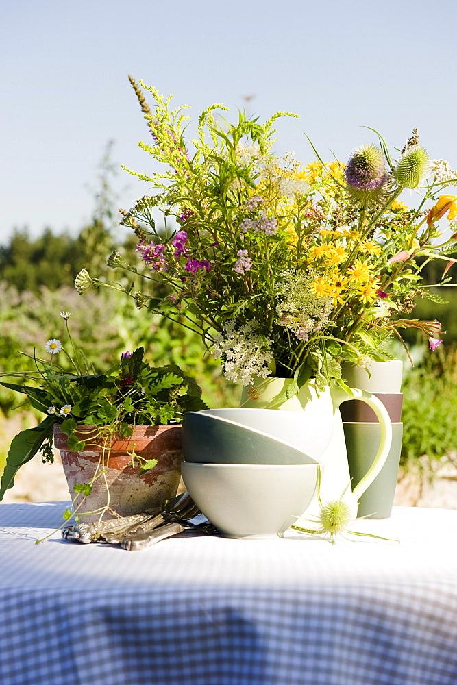 Fresh herbs in the garden, herbage, garden, Homegrown