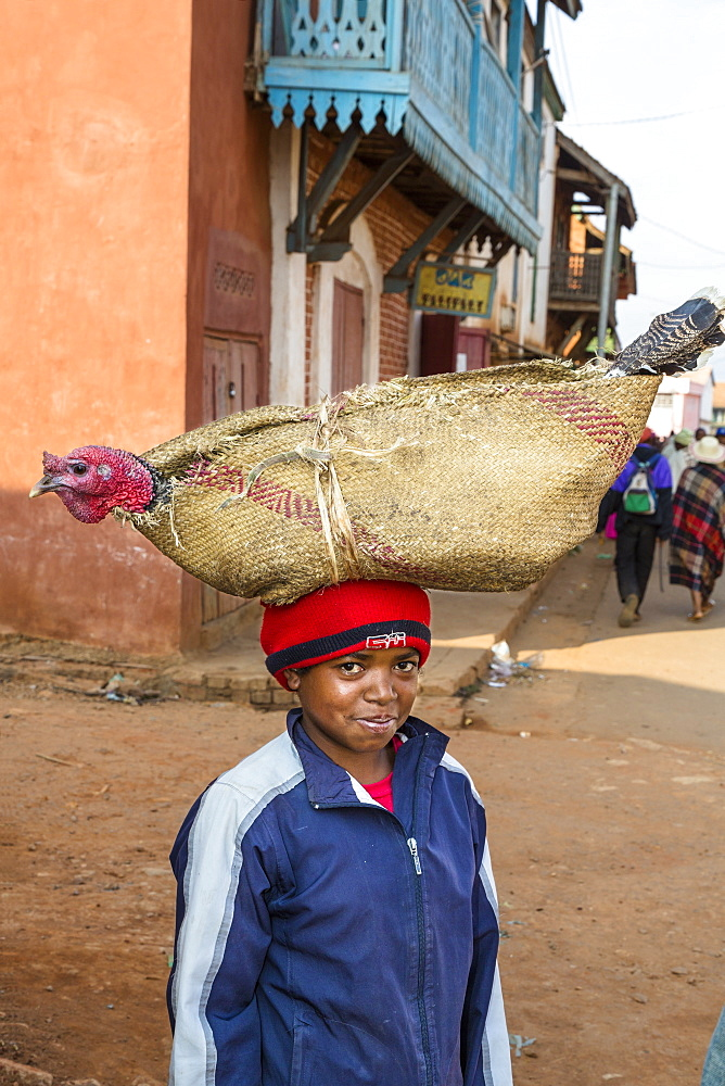 Madagascan boy carrying a turkey on his head, Betsileo tribe, Ambalavao, Fianarantsoa Region, Madagascar, Africa