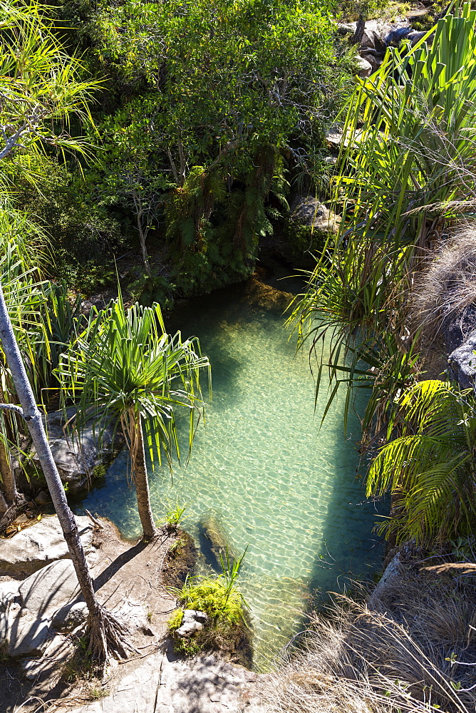 Natural swimmingpool in Isalo National Park near Ranohira, Ihorombe region, South Madagascar, Africa