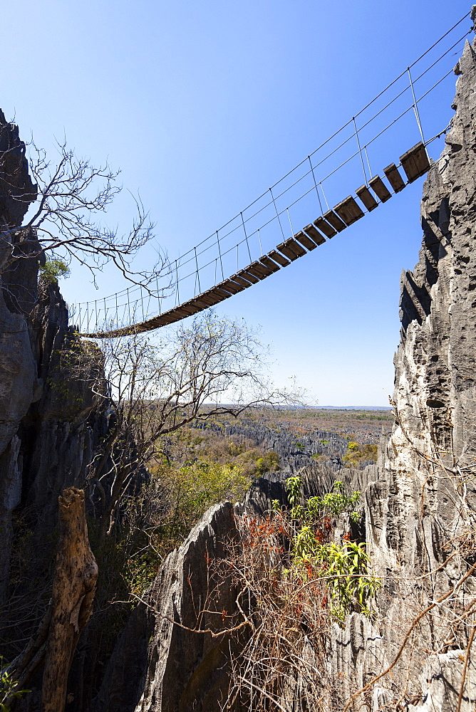 Suspension bridge in Tsingy-de-Bemaraha National Park, Mahajanga, Madagascar, Africa