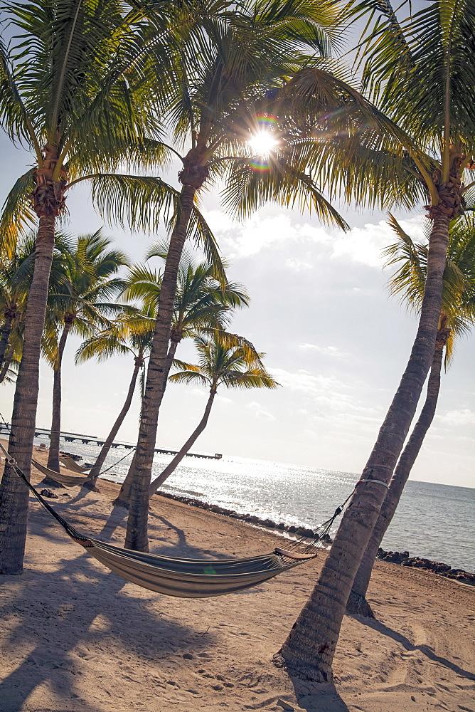 Beach area with hammock at luxury hotel Reach Resort, Key West, Florida Keys, USA