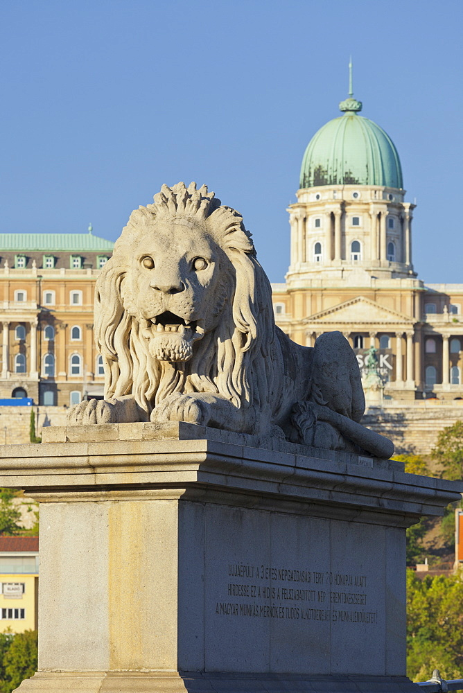Lion statue on the Chain Bridge in front of the Buda Castle, Budapest, Hungary