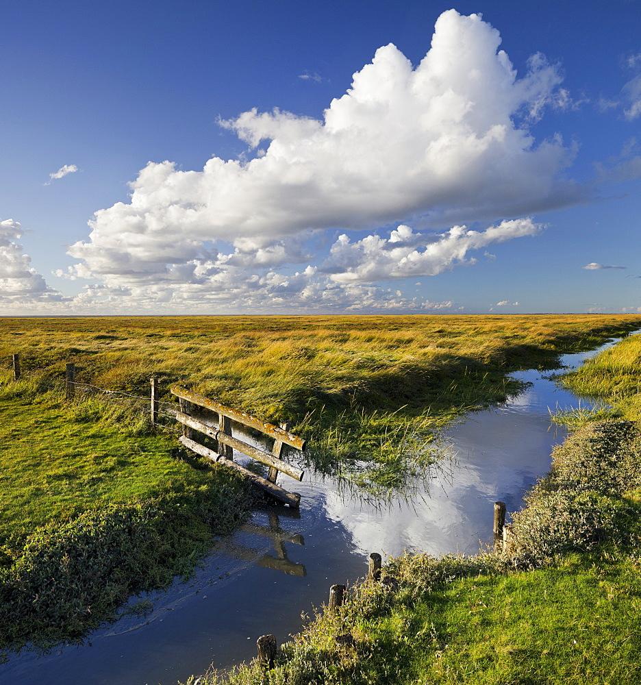 Fence on a a salt marsh, Westerhever, Schleswig-Holstein, Germany