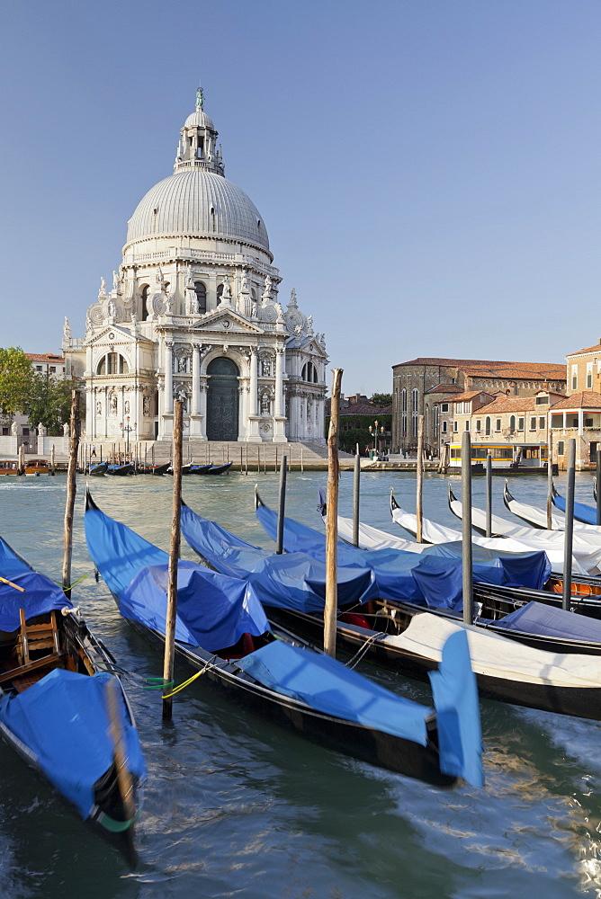 The church Santa Maria della Salute with gandolas, Canal Grande, Venice, Italy