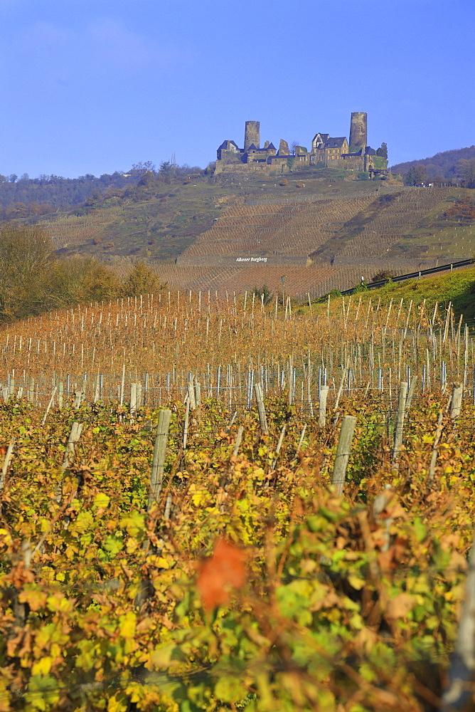 Alken with Thurant castle, Alken, Mayen-Koblenz, Rheinland-Pfalz, Germany
