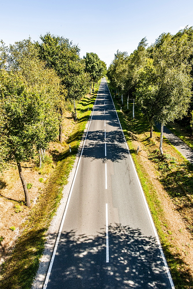 Road disappearing into the horizon, Radbruch, Winsen Luhe, Niedersachsen, North Germany, Germany