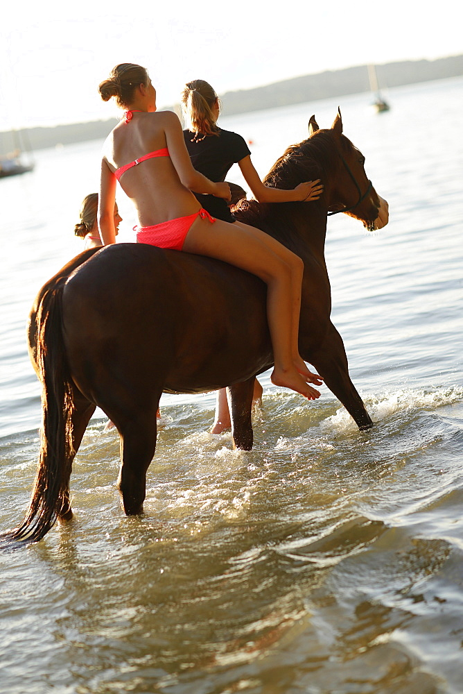 Girls with a horse in lake Starnberg, Ammerland, Munsing, Upper Bavaria, Germany