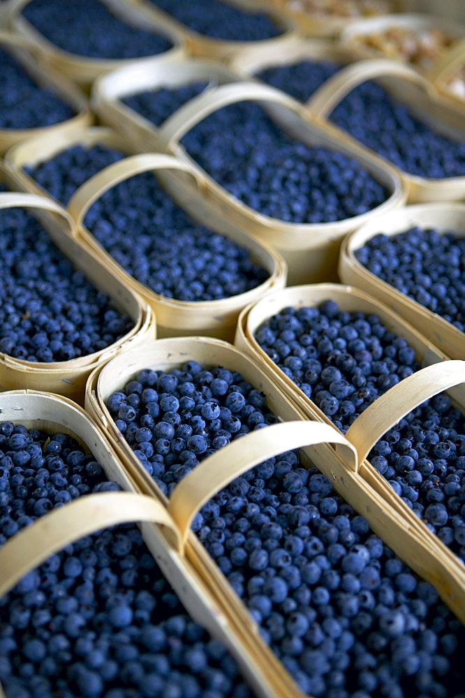 Blueberries, Jean-Talon Farmer's Market, Montreal, Quebec