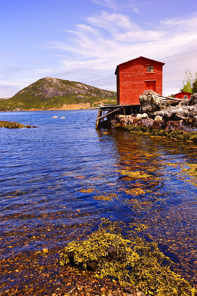 View of Lake, Salvage, Newfoundland