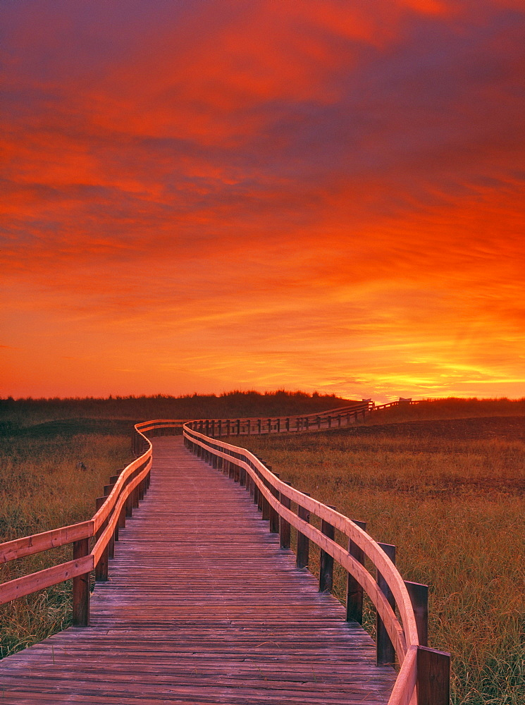 Boardwalk along the Salt Marsh, Kouchibouguac National Park, New Brunswick, Canada