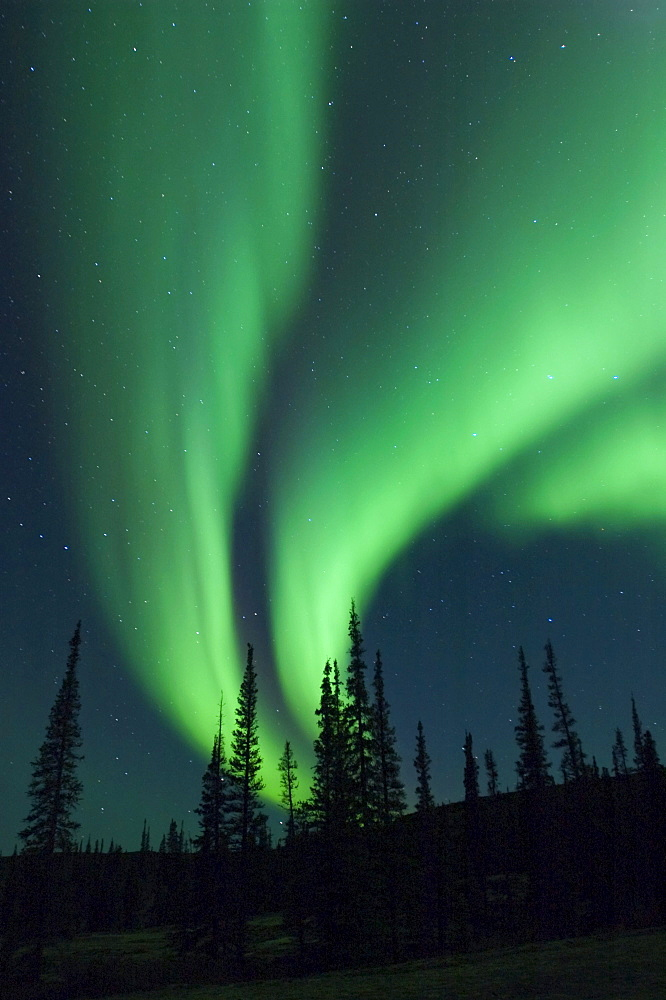 Northern light, Whitefish Lake, Northwest Territories, Canada