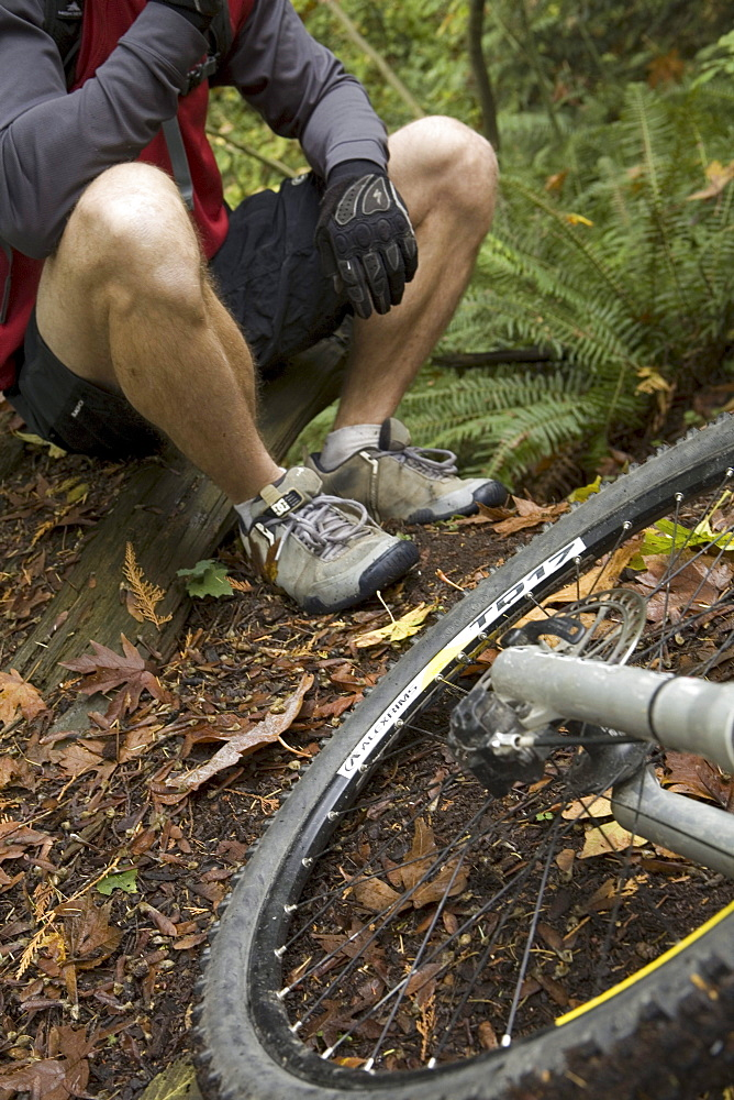 Male Mountain Biker on Trail in Stanley Park, Vancouver, British Columbia