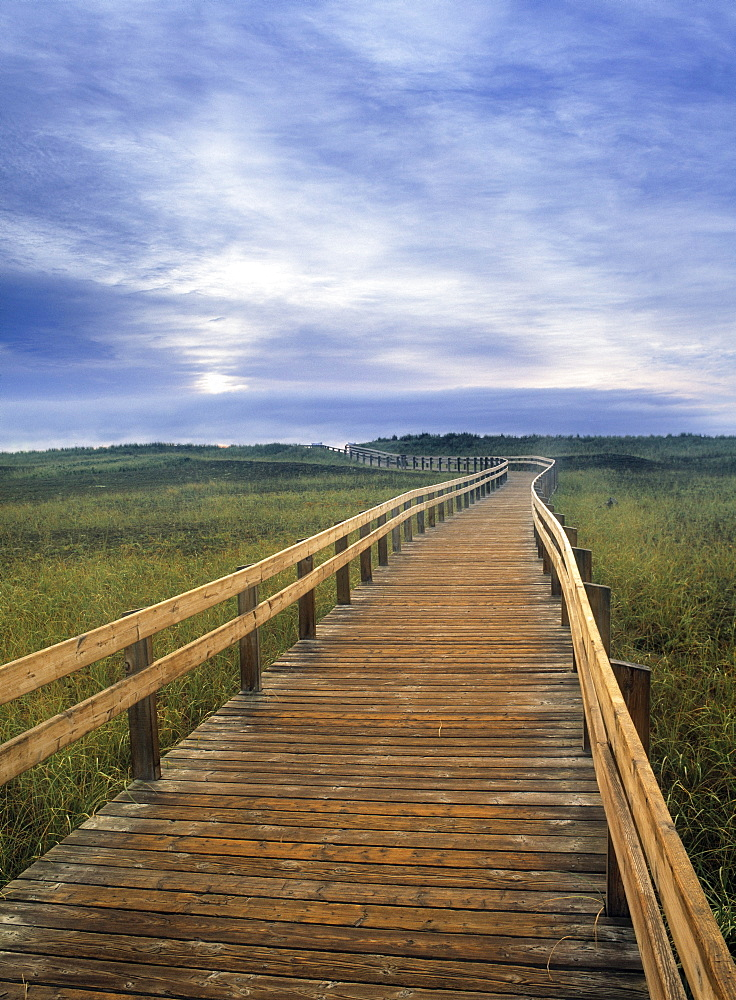 Boardwalk in Salt Marsh, Kouchibouguac National Park, New Brunswick