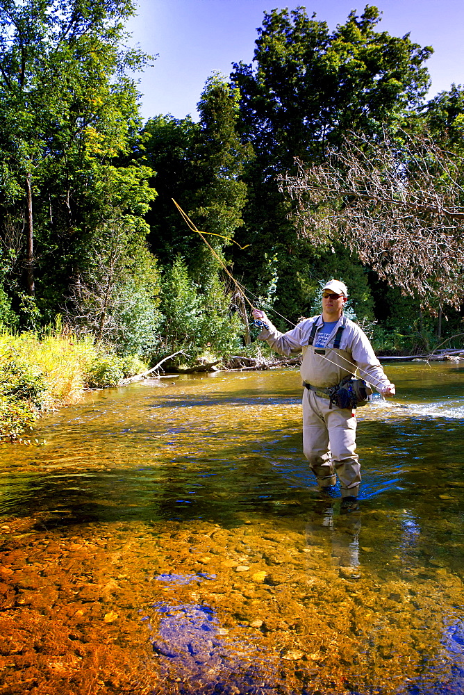 Fly fishing on the Credit River, Ontario Canada