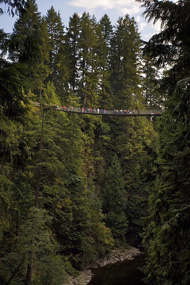 People crossing Capilano Suspension Bridge, Vancouver, British Columbia
