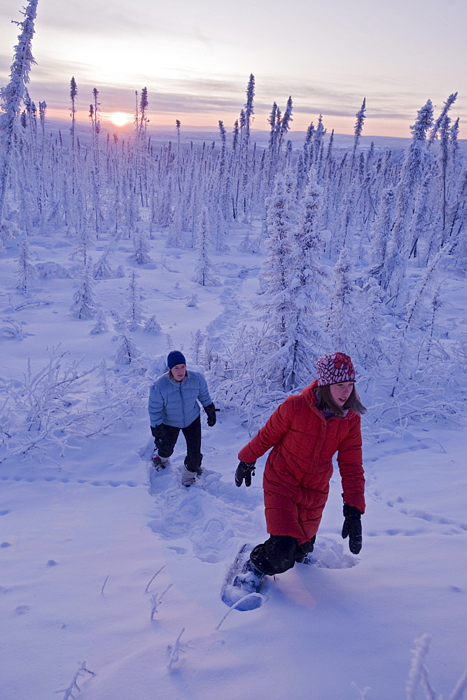 Mother and Daughter hiking in snowshoes through snow-covered forest, Dempster Highway, Yukon